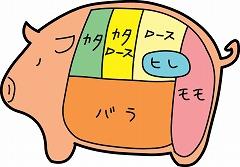 豚肉の部位・イラスト